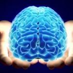 Una nueva visión en la investigación del Alzheimer